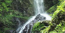 Rain waterfalls