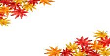 いろいろな色の紅葉 コピースペース 水彩風イラスト