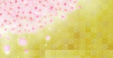 日本绘画风格的新年背景插图,其中盛开的樱花盛开,花瓣撒在金箔的背景下