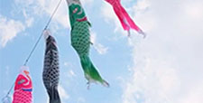 Carp streamer Blue sky and carp streamer Spring Tango no Sekku